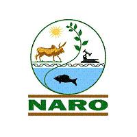 NARO Logo
